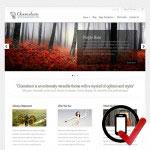 chameleon Wordpress skabelon - perfekt til stort set alle virksomheder.