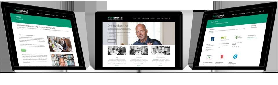 sundstrategi.dk WordPress hjemmeside